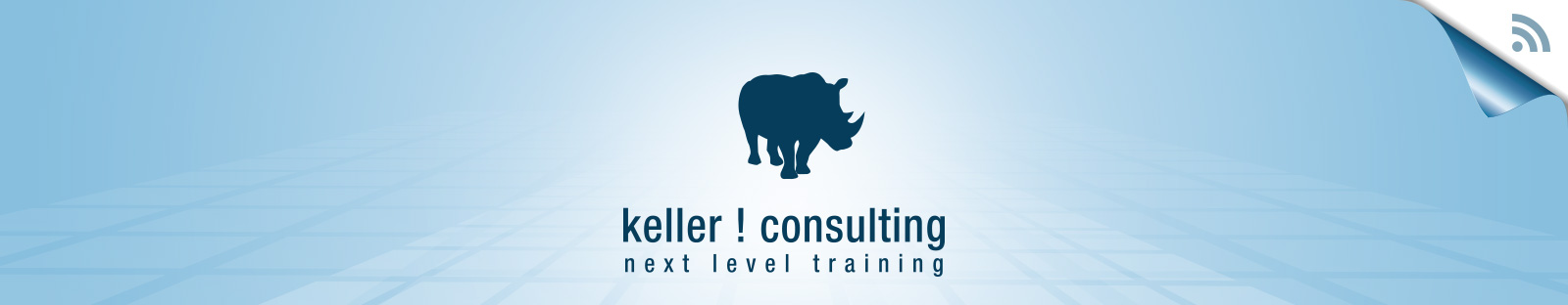keller ! consulting
